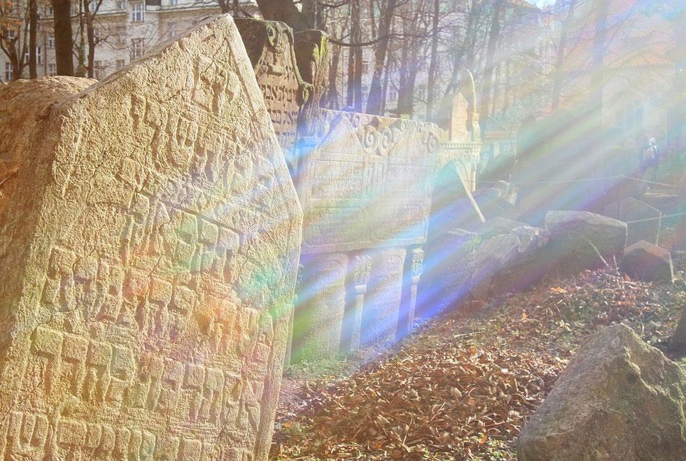 Ancien cimetière juif. Prague.