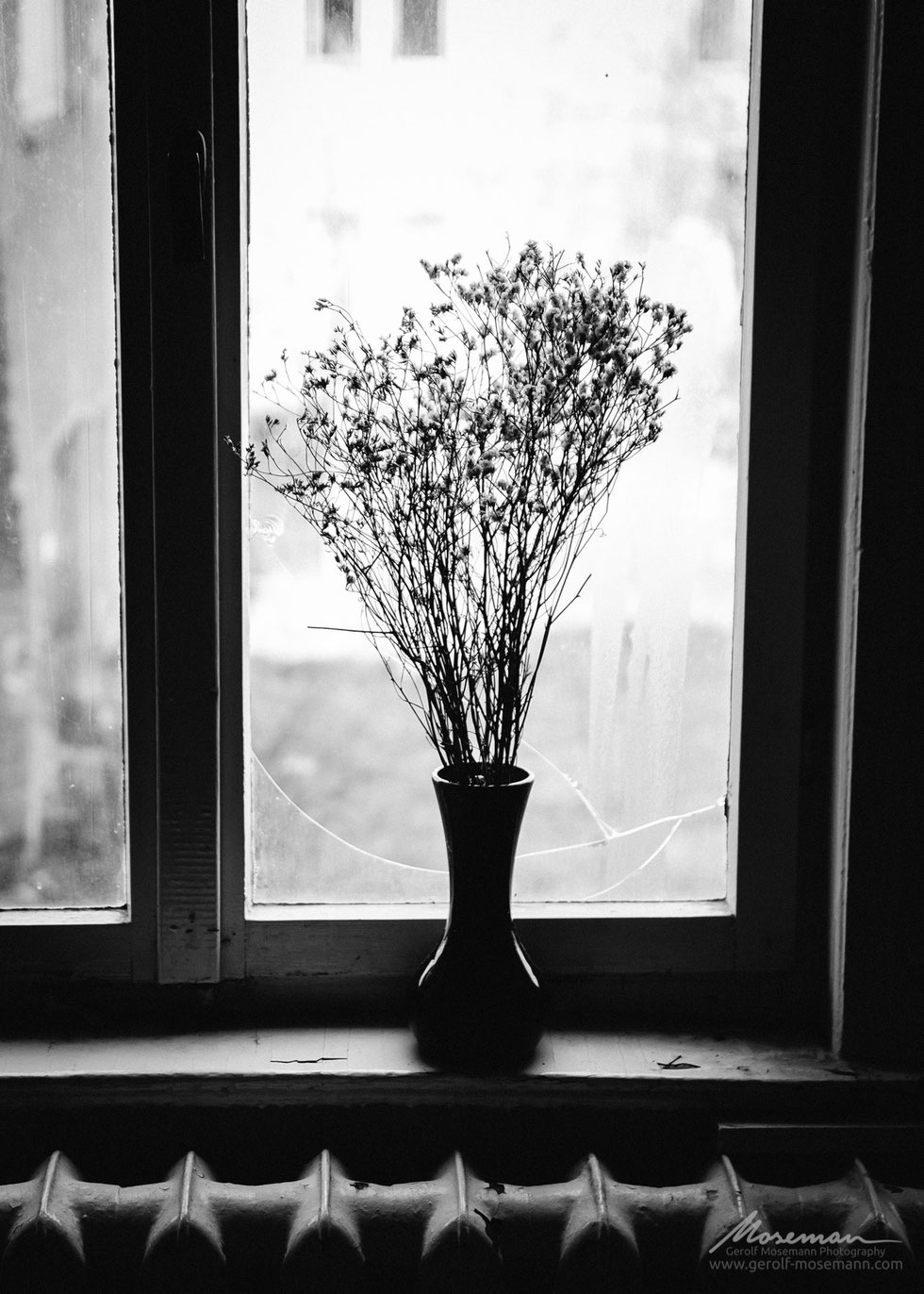 A bouquet of flowers in a broken window