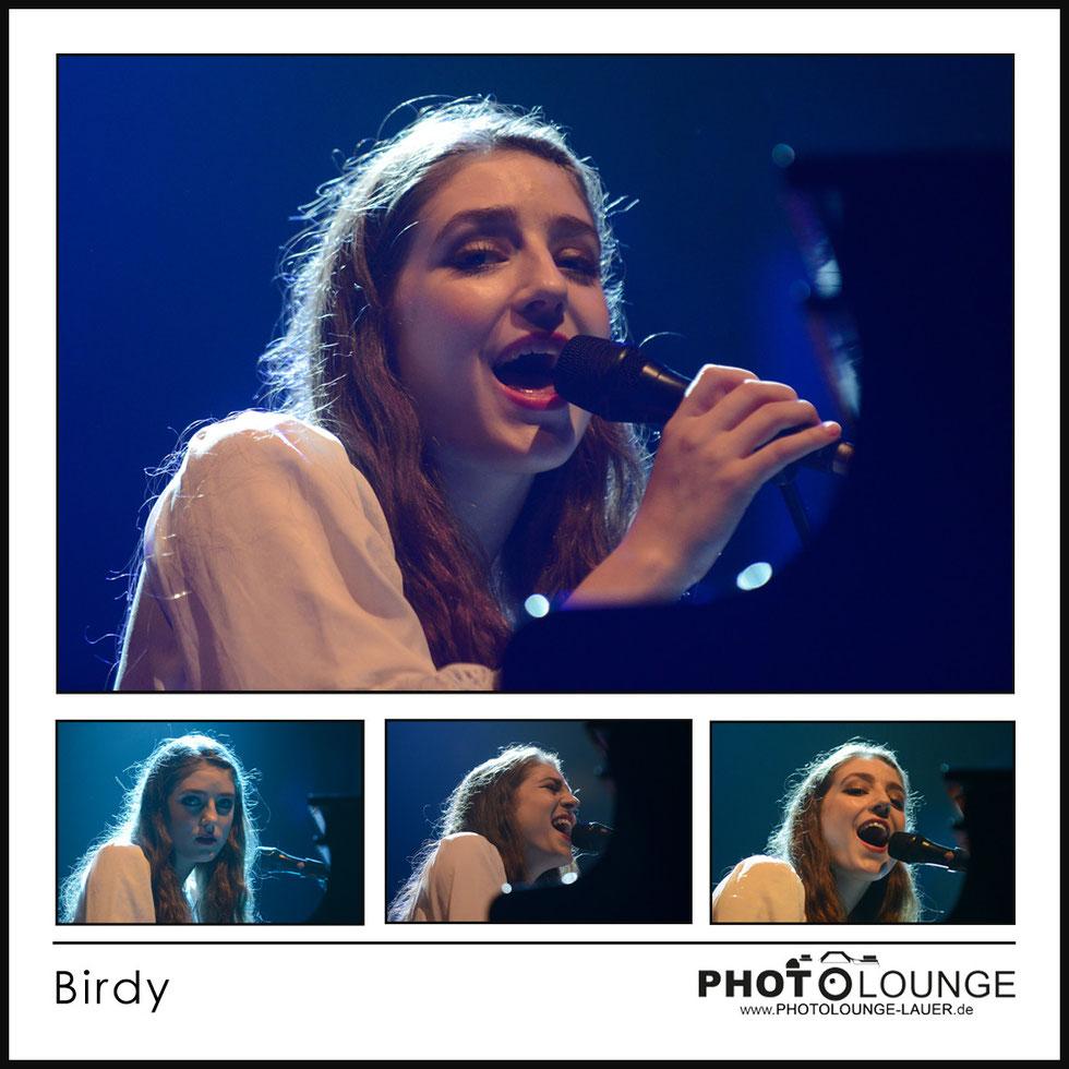 Tollwood 2014: Birdy