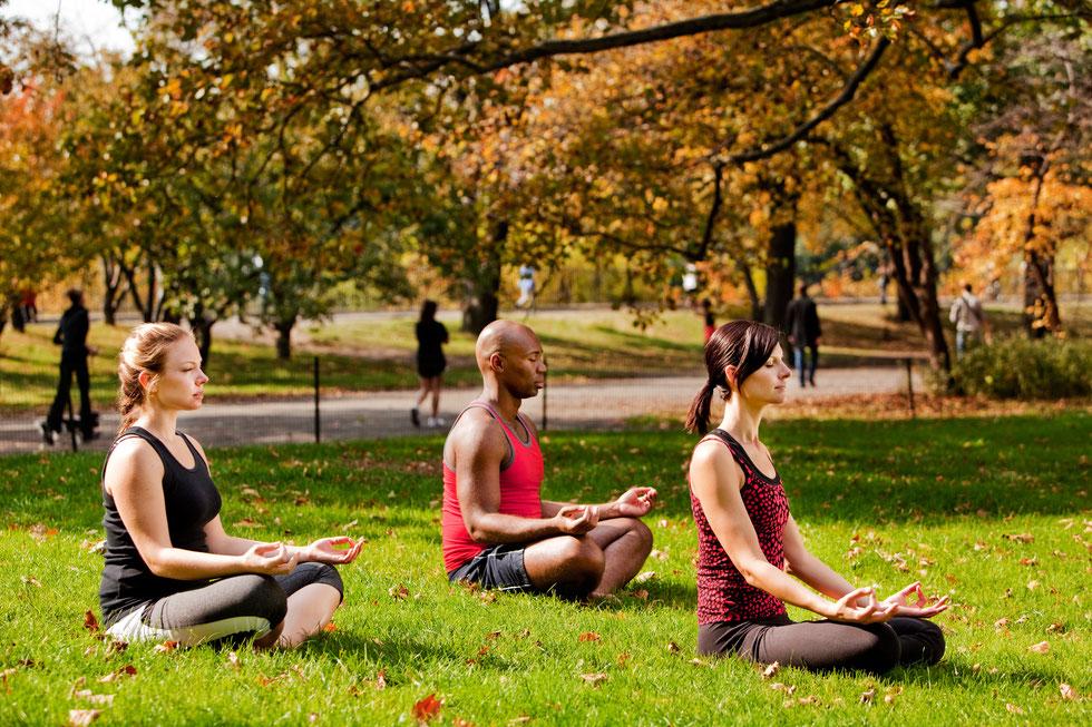 Bild Yoga im Park in München
