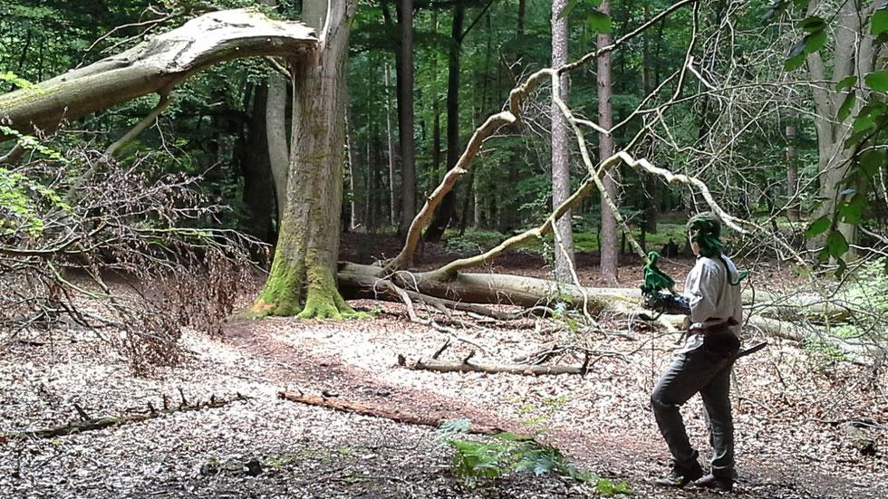 irrlichtjaeger im Wald mit Drachen