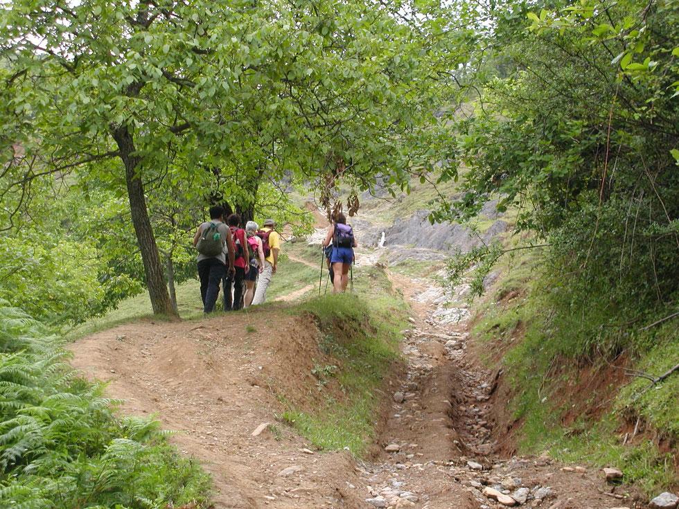 Unsere Wandergruppe 2008