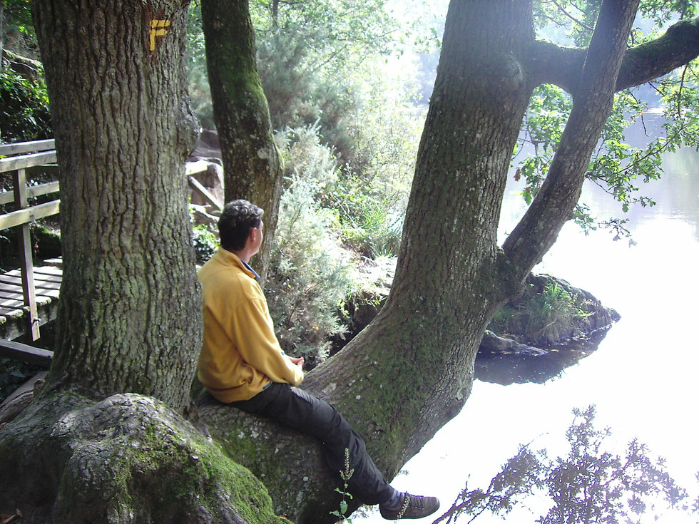 Broceliande- La Val sans retour - Feenspiegel / Der See der Fee Viviane