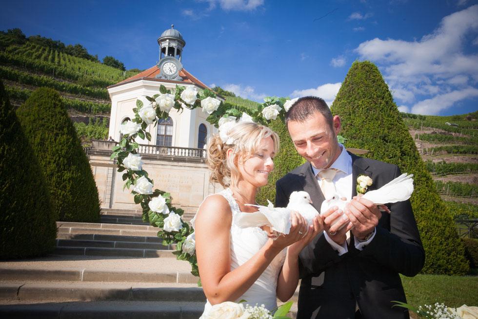 Hochzeitsfotos Dresden, Hochzeitsfotograf Dresden, Hochzeit Schloss Wackerbarth, Hochzeit Radebeul, Hochzeit auf Schloss Wackerbarth Radebeul, Hochzeitsfotos Schloss Wackerbarth, Hochzeit Schloss Wackerbarth