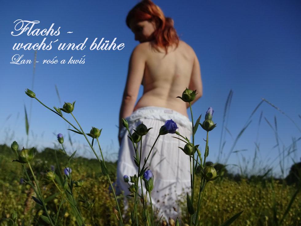 Folkskammer, Flachsfeld, Leinenfeld, naked girl in a farmer field, Spreewaldlegenden, Flachs-wachs und Blühe, Leinen
