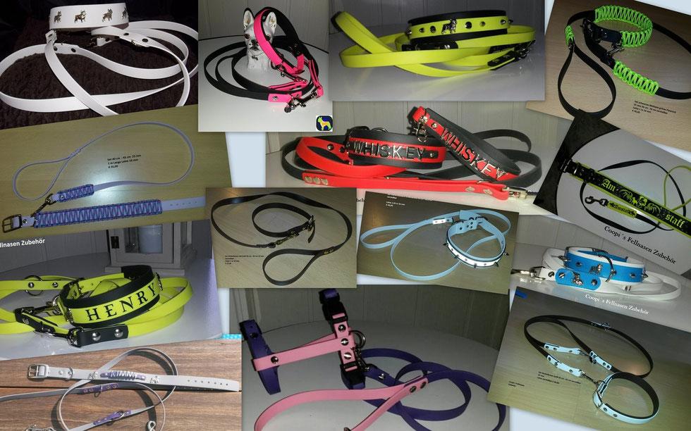 Hunde Set aus Biothane Halsband, Leinen, Schlüsselanhänger, mit Druck, Plotter, Halsband mit Namen, Brustgeschirr aus Biothane, Leine verstellbar, Halsband mit Nieten