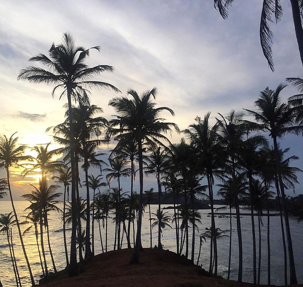 Coucher de soleil à Mirissa