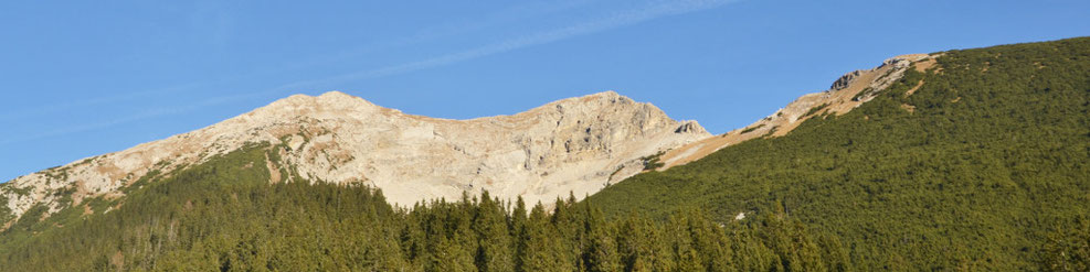 Felsiger Gipfel des Daniels hinter Bergwelt
