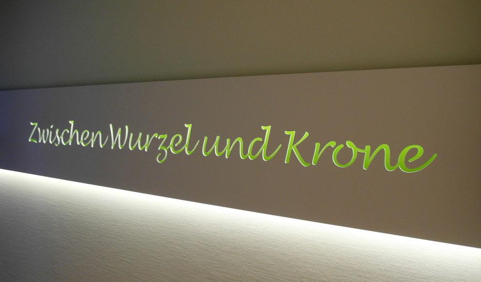 Schriftzug für Zahnarztpaxis  In Vollkernmaterial gefräßt und mit LED auf grüner Rückwand hinterleuchtet