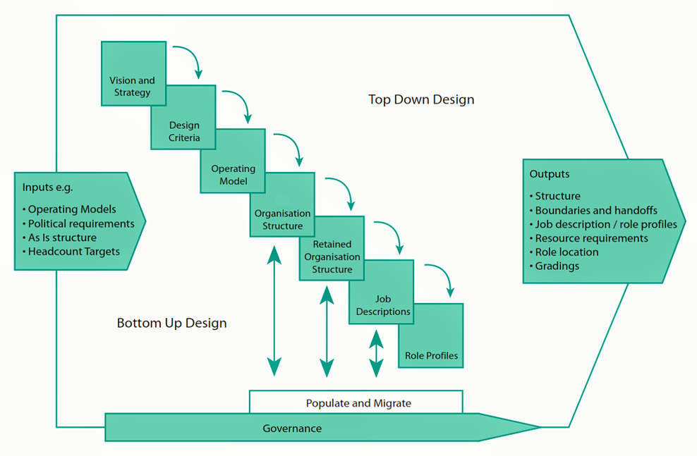 SEED Advisory on Organizational Design