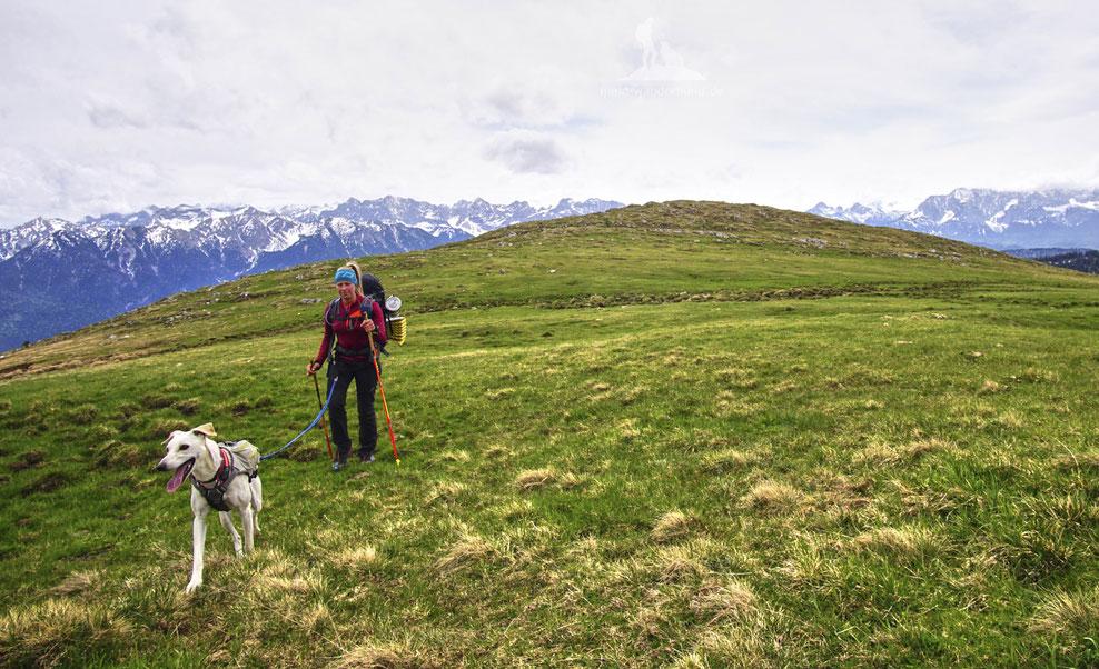 Doktrekking; Wandern mit Hund; Maria Müller; mein-wanderhund.de