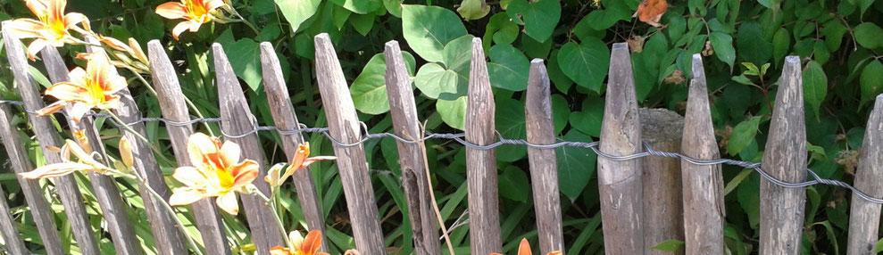 Naturzaun für Zaunhocker