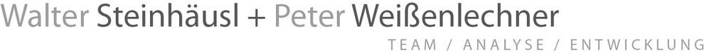 Teamanalyse Teamentwicklung Teambuilding Wien