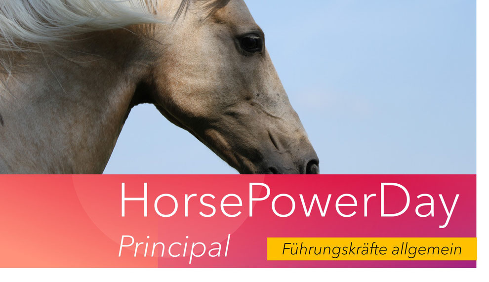 HorsePowerDay Führungskräfte allgemein