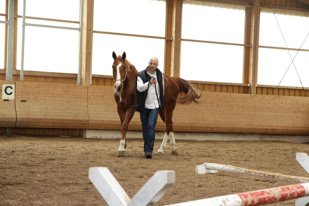 Achtsamkeit, Einfühlungsvermögen, Durchsetzungskraft und Konsequenz sind beispielhafte Qualitäten m Führungsalltag, die bei den Selbsterfahrungsworkshops mit Pferden individuell trainiert werden. Konkrete Trainingserlebnisse sind nachhaltige Praxis-Anker!