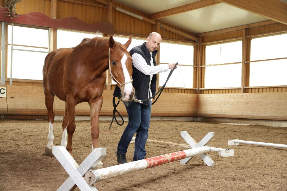 Michael Nadig ist erfahrener Business-Coach mit einer fundierten Spezialausbildung für Führungs- und Vertriebstrainings unter Einbeziehung von Pferden. Seit 2005 hat er in ca. 150 Horse-Leadership-Power-Trainings Führungskräfte weiter gebracht.