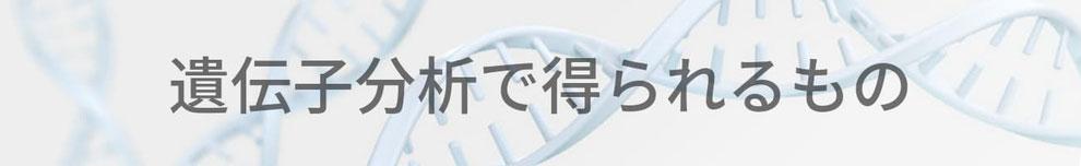 スポーツ遺伝子検査で得られるもの