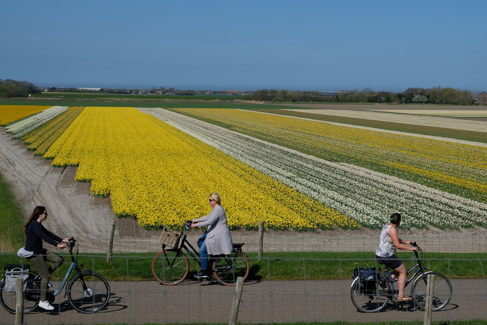 Radfahrer auf der Insel Texel, Foto Grafberger