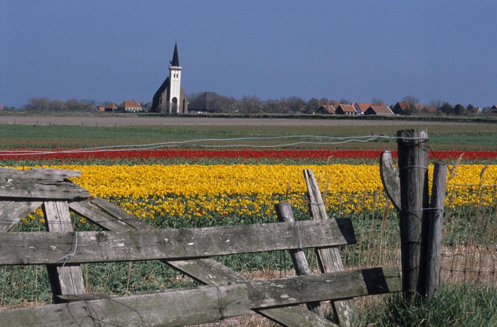 Quelle: Pressekontakt VVV Texel