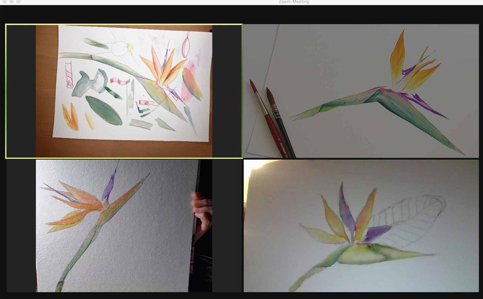 aquarell malen lernen, onlinekurs für fortgeschrittene, online malen lernen, blumenaquarell, flo,rale aquarelle, malkurs, mityoudesignmemalenlernen, zoom malkurs, strelitzien malen, tropische blumen malen