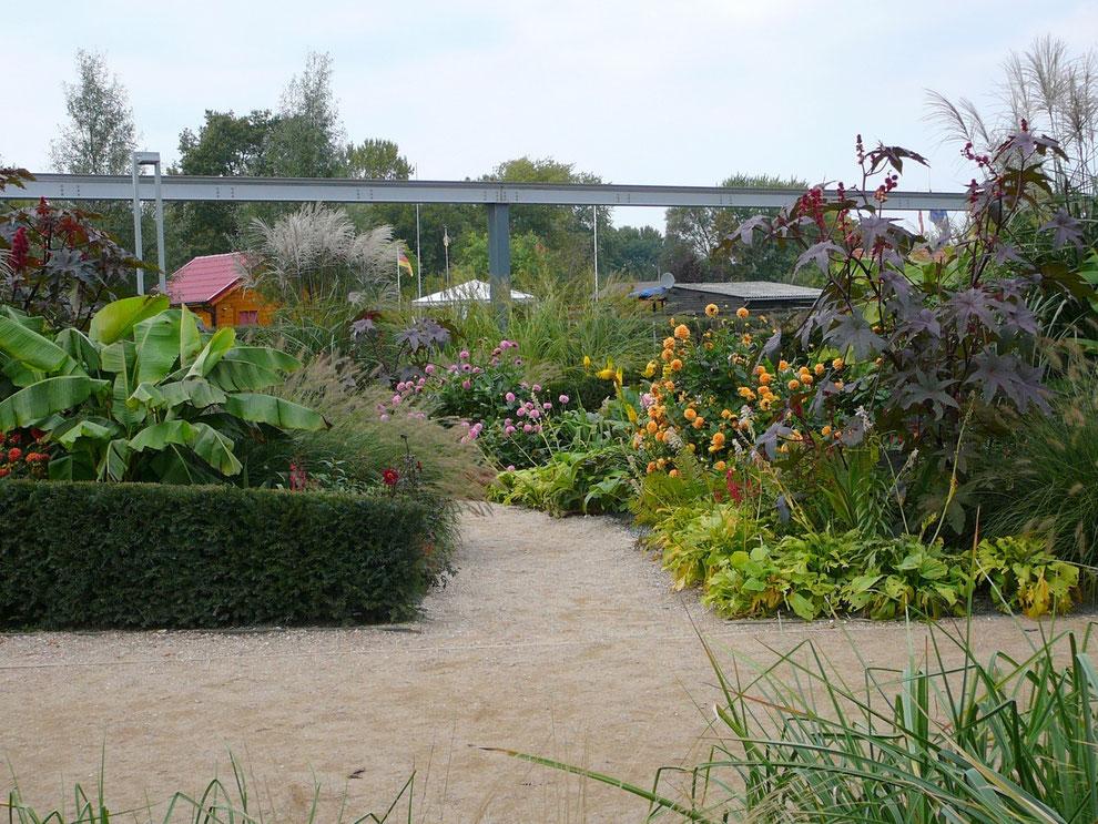 Der schönste Garten auf dem Gelände! Wir tauchen in einen Garten, der an Farbintensität kaum zu überbieten ist, wirklich ein Stück Paradies!