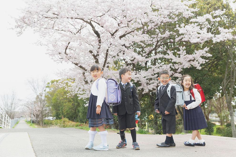 兵庫 県 学校 いつから