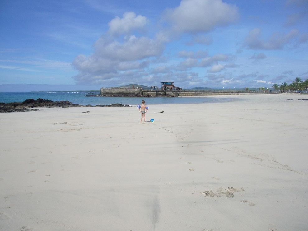 Galápagos Inseln mit kleinen Kindern zu bereisen macht hier am meisten Spass: Insel Isabela