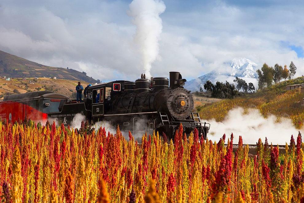 Mit der Eisenbahn quer durch Ecuador, der Tren Crucero macht es möglich