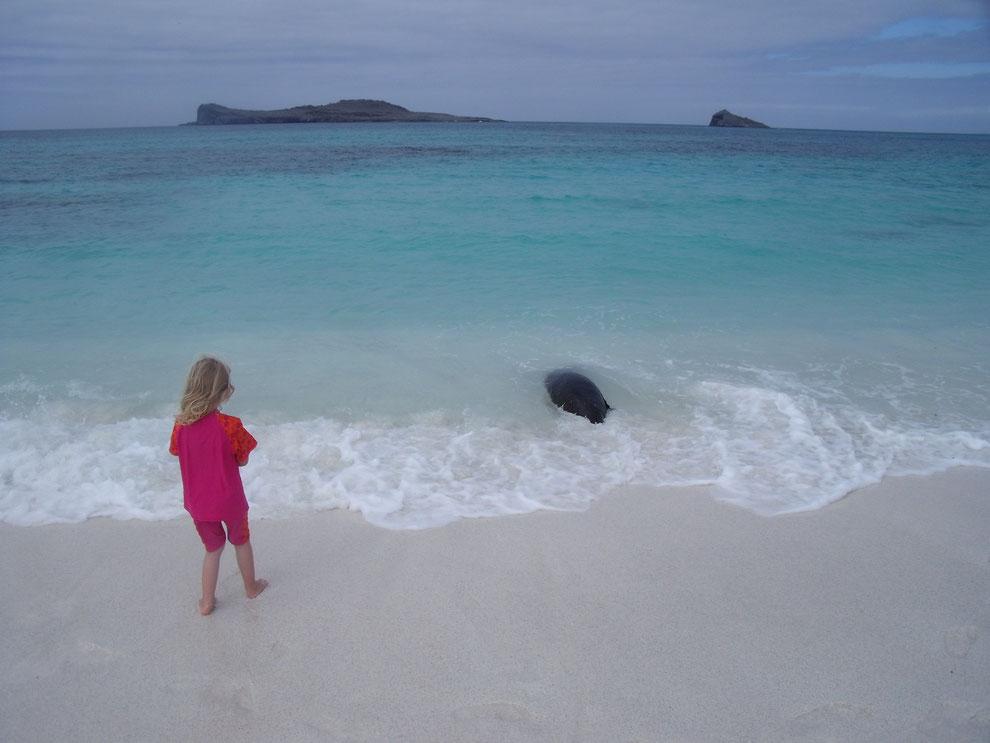 Reisen mit Kindern nach Ecuador und auf die Galápagos Inseln mit ECUADORline - wir sind die Spezialisten!