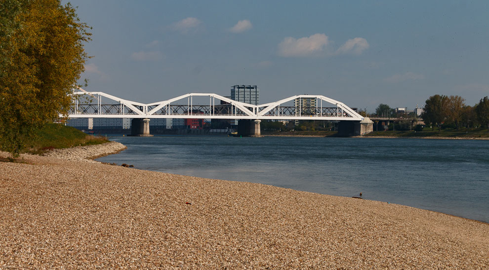 Der Ausblick auf die Brücke nach Mannheim. * The view of the bridge to Mannheim.