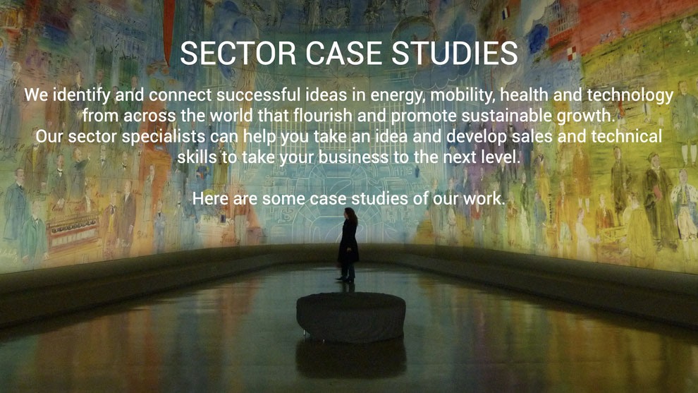 Sector case studies: We identify and connect successful ideas in energy, mobility, health and technology from across the world that flourish and promote sustainable growth.