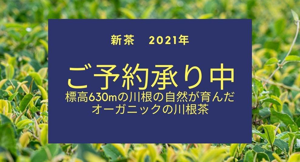 【2021年新茶】『馥 初摘み』、『ドリップティーセット』、『新月茶』、『満月茶』の予約販売を開始!標高630mの川根の自然が育んだ、オーガニックの川根茶です。
