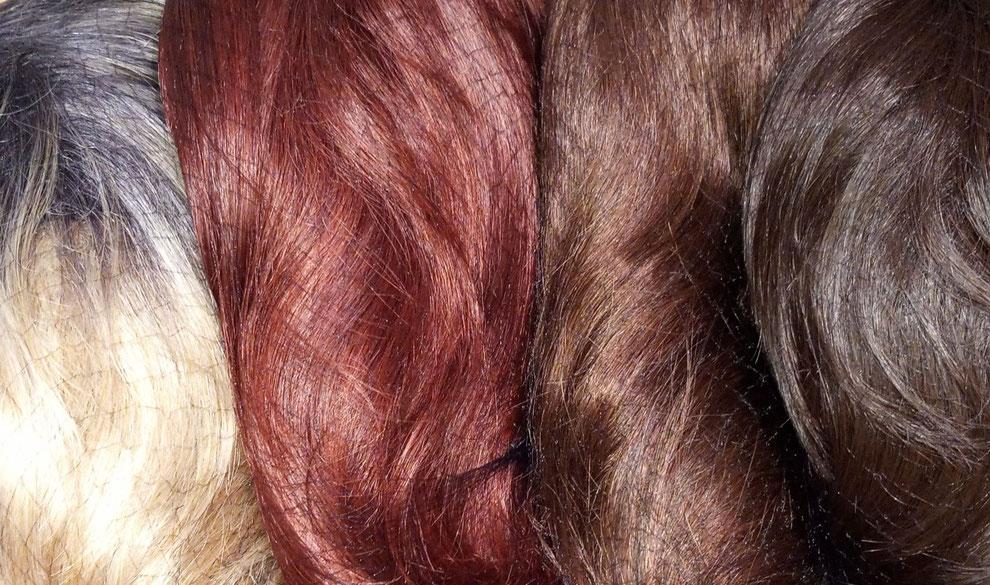 Perruques de couleurs différentes