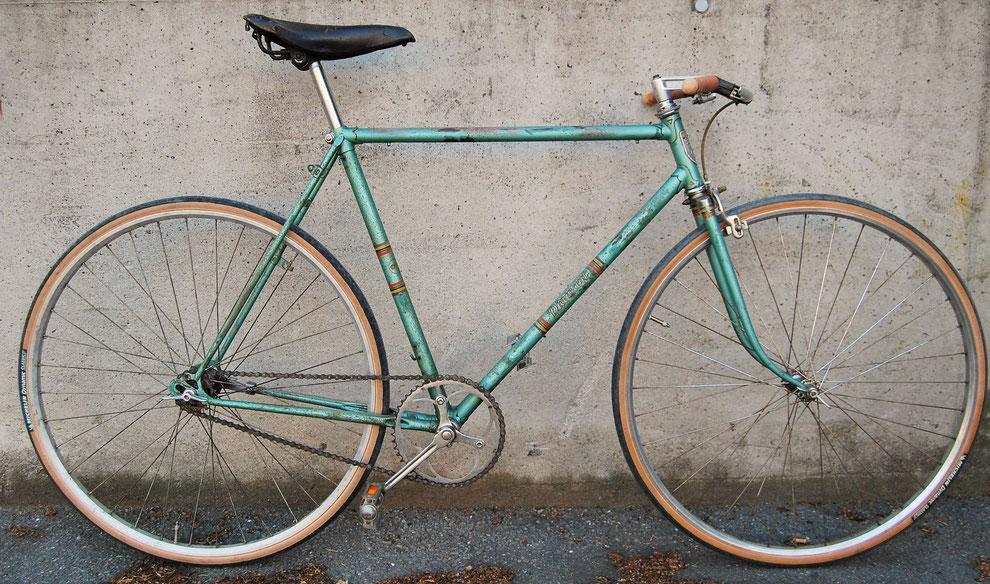 Diamant Fahrrad Fixie