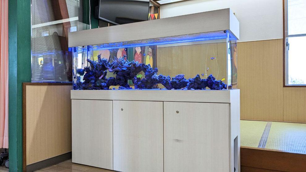 海水魚ろ過システムの解説です