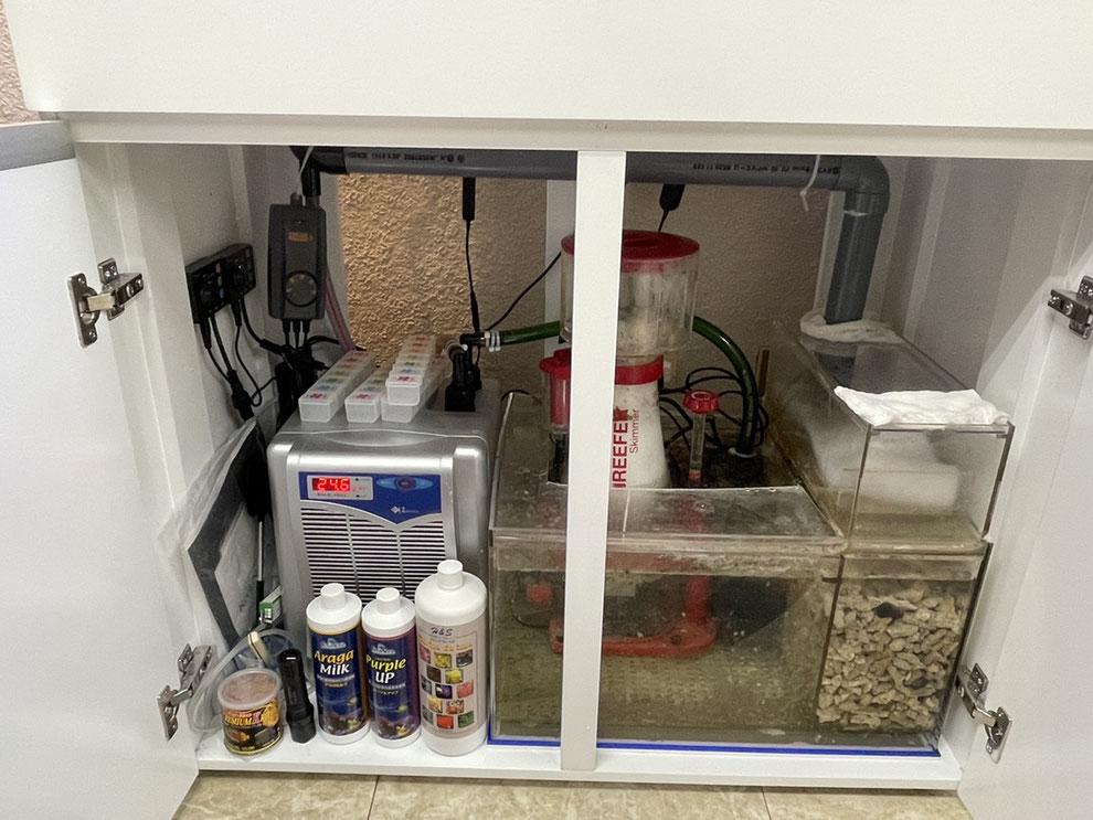 海水魚水槽に使用するプロテインスキマーの説明