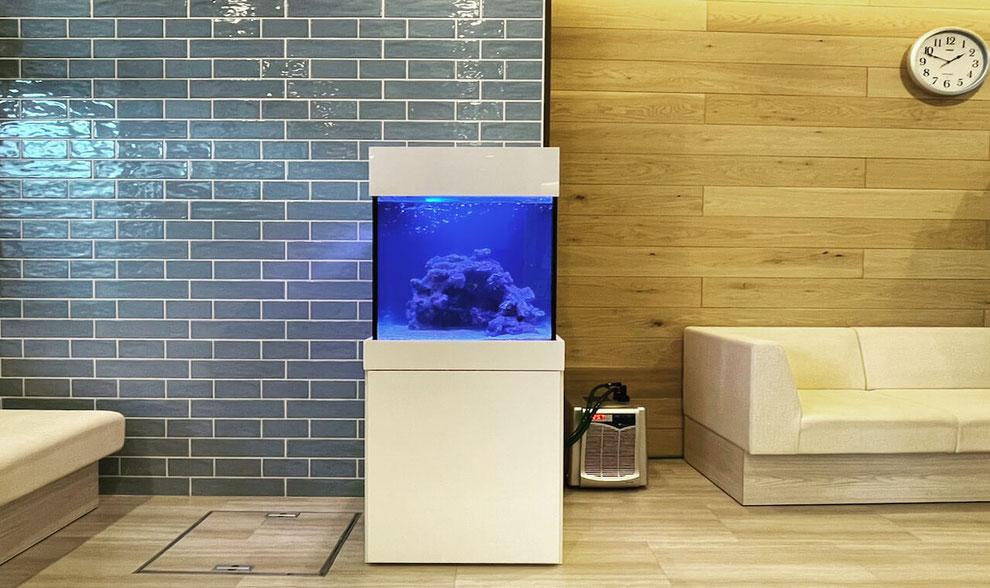 小児科専用のアクアリウム水槽レンタル事例