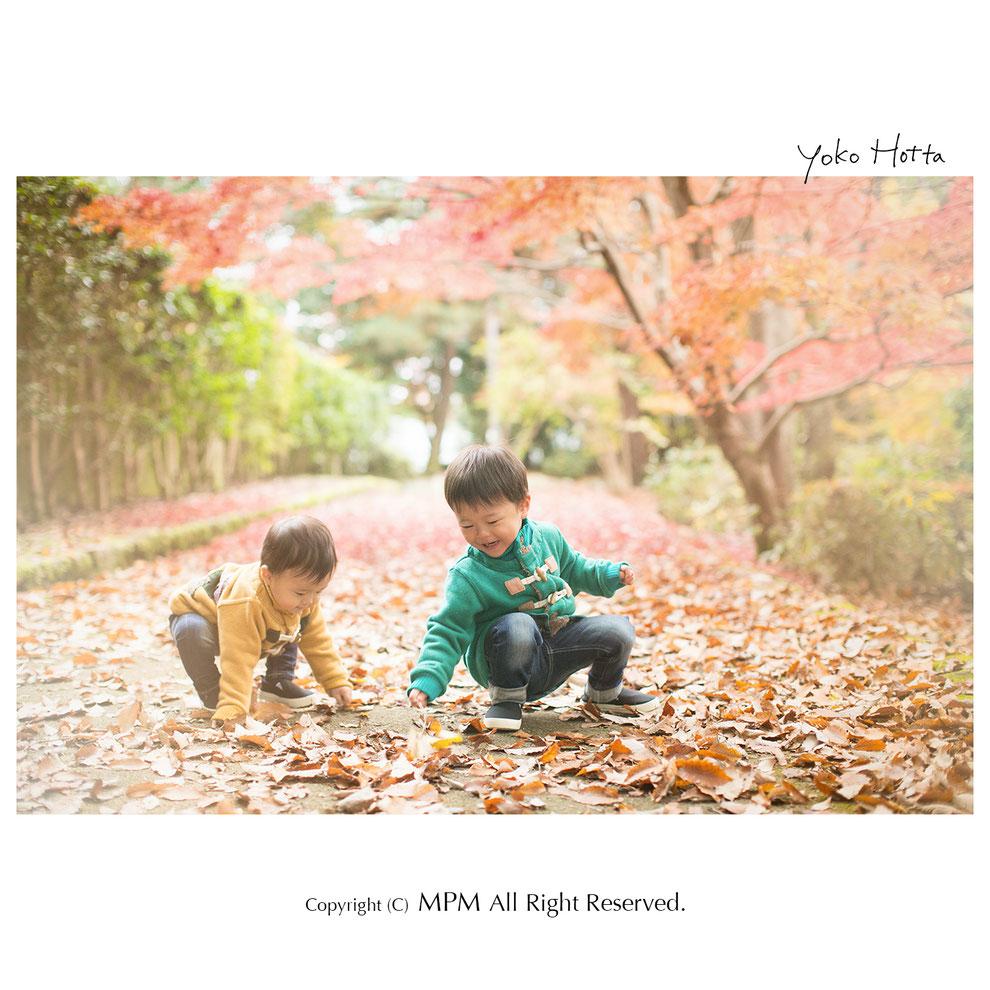七五三写真 京都 滋賀©MPM All Right Reserved