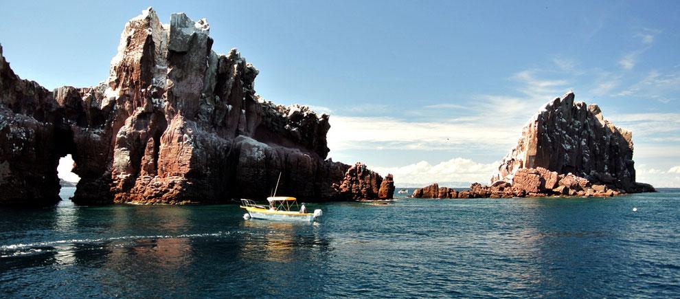 Tours Espíritu Santo Island La Paz