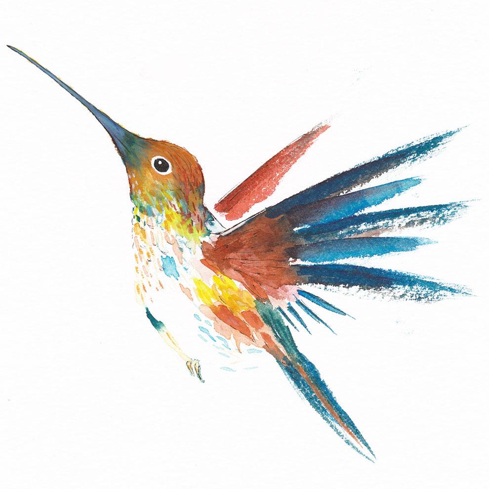 Een geschilderde vogel, kolibrie, in rood, blauw en oranje, met uitslaande vleugels.