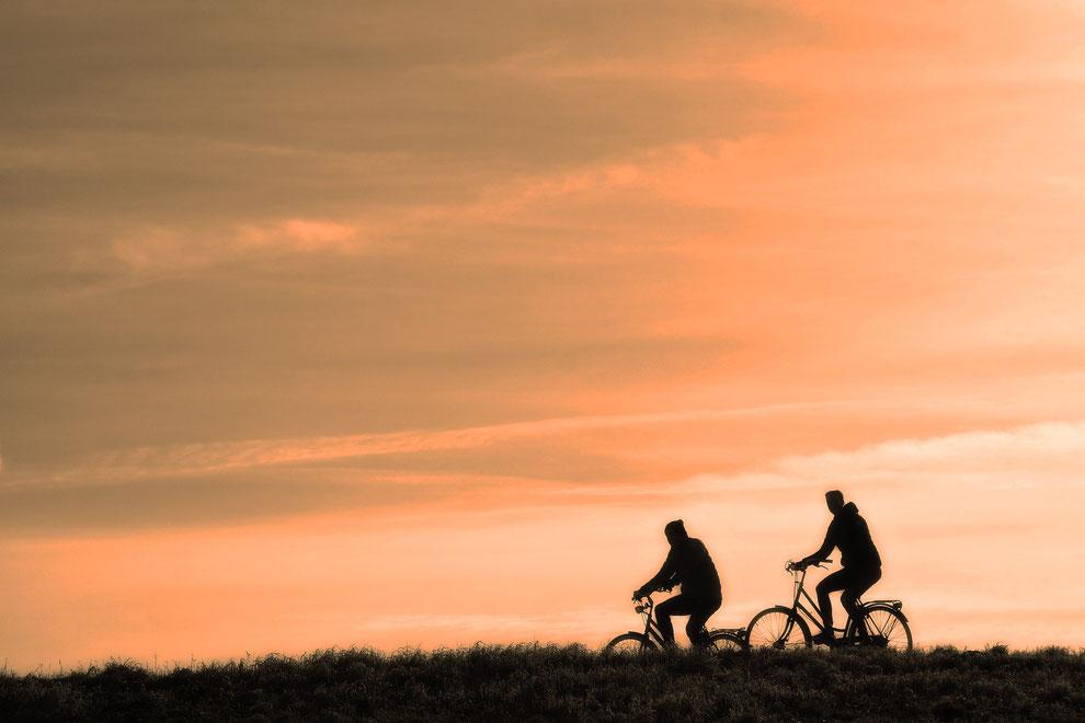 Tritone所沢ギター教室 趣味のサイクリング