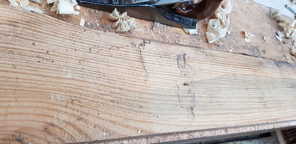 Soft wood board with live edge before hand planing