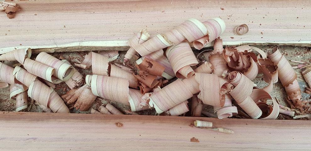 Das Plaumenholz stammt aus dem eigenen Garten, wurde vor drei Hahren gefällt und aufgeschnitten. Unter einenm Regenschutz konnte es zur Weiterverarbeitung lufttrocknen.The ripped plum wood shows a beautiful grain coloring in reds and violets.