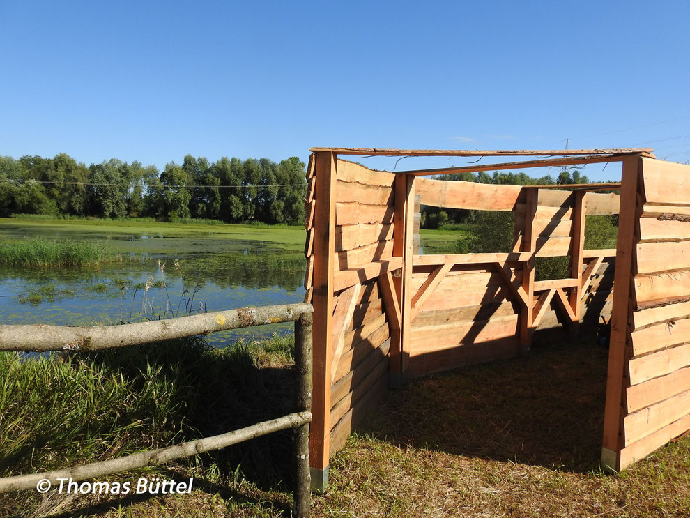 new hide at the Abtissensee