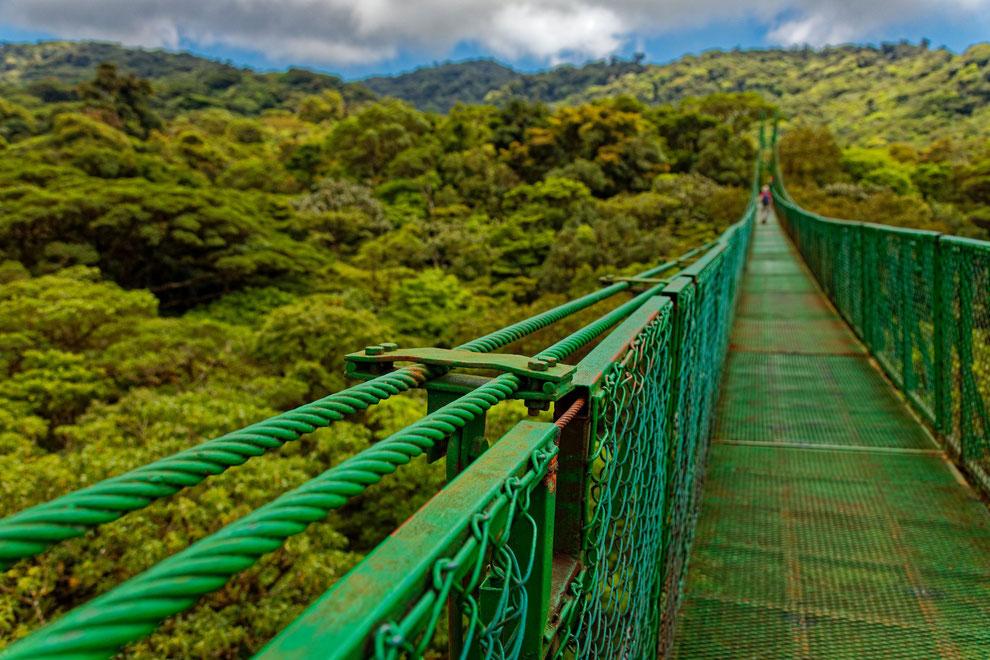 Baumwipfelpfad in Monteverde