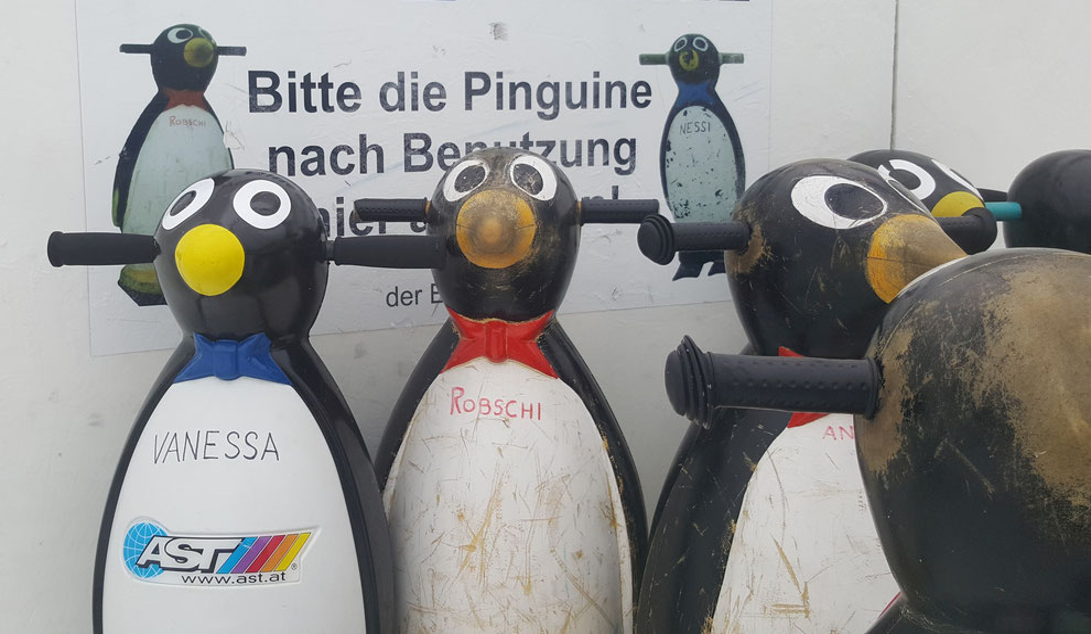 Grasshoppers Wolkersdorf Eishockey Eislaufschule