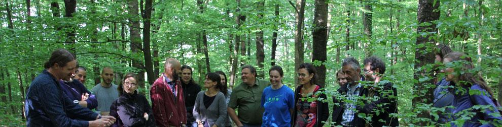 das SILVIVA Team im Wald