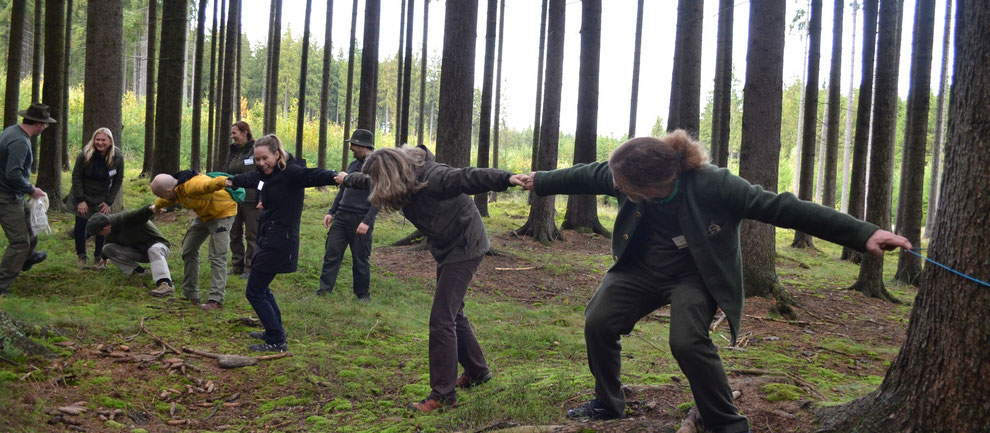 Gemeinsame Aktivitäten im Wald