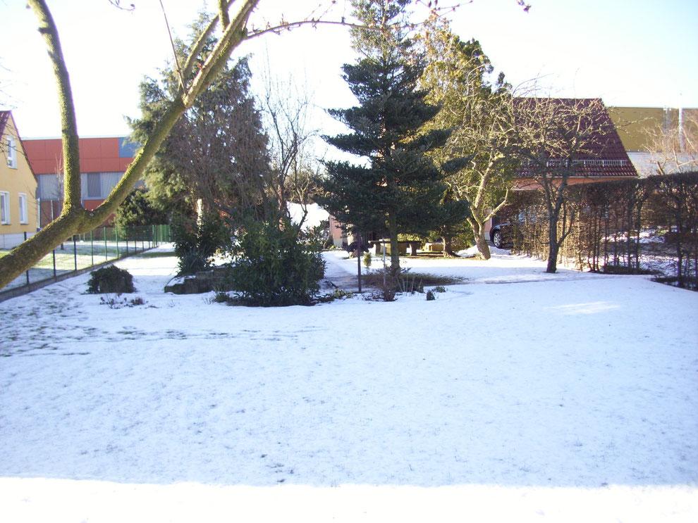 In den Gärten lag noch eine Menge Schnee und wir suchten nach Spuren.