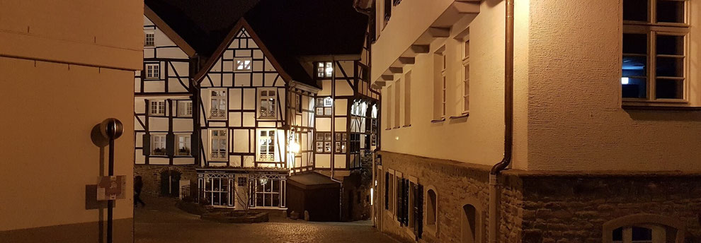 Kammerjäger Mülheim an der Ruhr